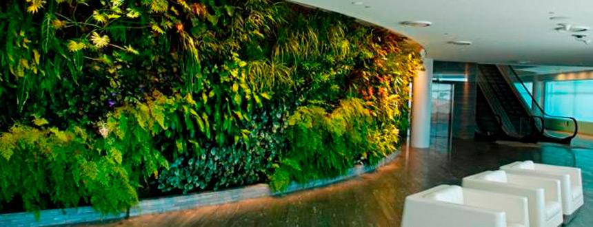 Jardines verticales, la tendencia sustentable que atrae clientes